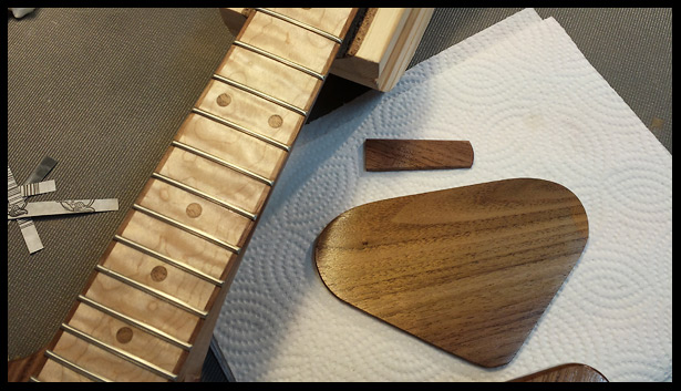 The neck, electronics cavity cover and truss rod cover