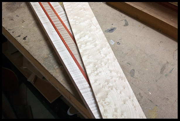 The neck and fingerboard blanks